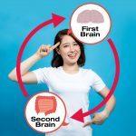 human brain and guts, second brain